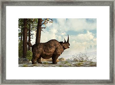 Woolly Rhino Framed Print by Daniel Eskridge