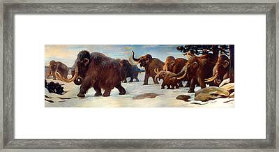 Wooly Mammoths Near The Somme River Framed Print