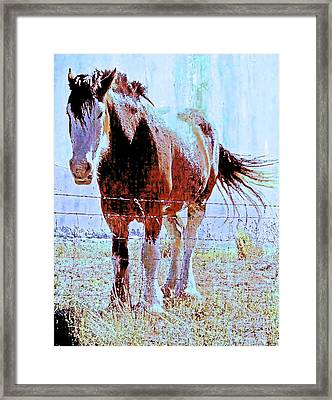 Workhorse Framed Print