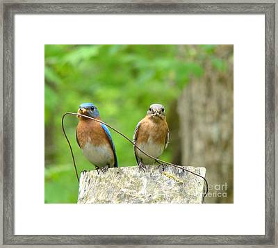 Working Couple Framed Print