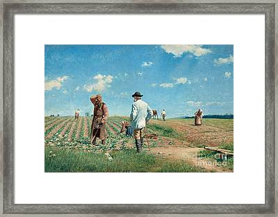 Working The Fields Framed Print by Celestial Images
