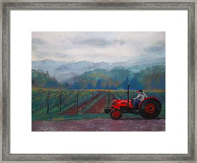 Working The Vineyard Framed Print
