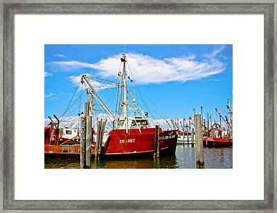 Working The Waters Framed Print by Colleen Kammerer