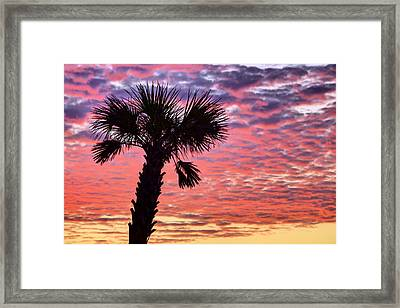 World Famous Panama City Beach Framed Print by JC Findley
