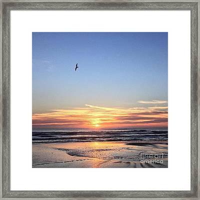 World Gratitude And Peace Day Framed Print