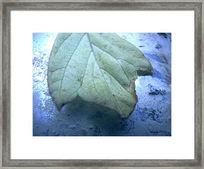 World Leaf Framed Print by Marko Mitic