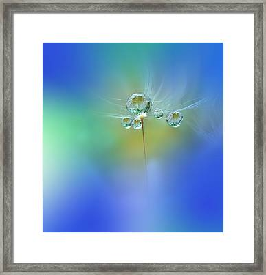 World Of Drops Framed Print by Juliana Nan
