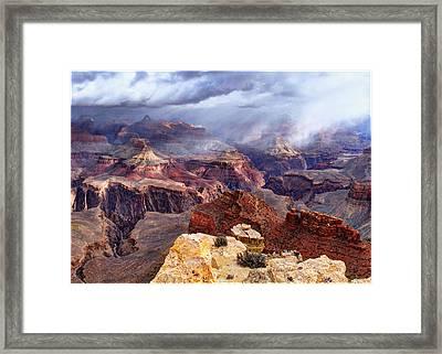 World Of Wonders Framed Print