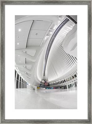 World Trade Center Wtc Oculus Hub Framed Print by Susan Candelario