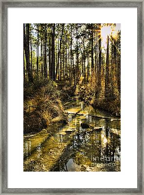 World Without People Framed Print