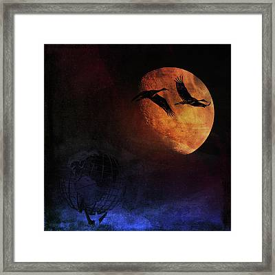 World's Fair Birds Framed Print