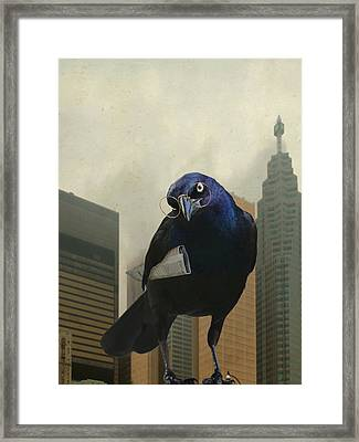 Wormsense Framed Print by Jan Piller