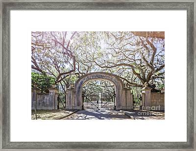 Wormsloe Gate Framed Print by Joan McCool