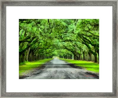 Wormsloe Plantation Framed Print
