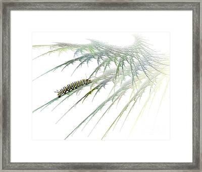 Wormwood Framed Print by Jan Piller