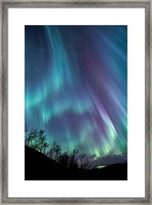 Worth The Wait Framed Print by Tor-Ivar Naess