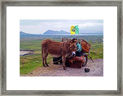 Would You Like A Ride In Ireland Framed Print