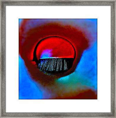 Wounded Framed Print by Gwyn Newcombe