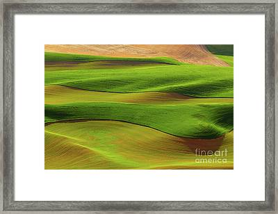 Woven Into Life Framed Print