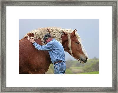 Wrangler Jeans And Belgian Horse Framed Print