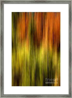 Wrapped Framed Print by Az Jackson