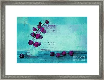 Wrapped Beauties - T43a Framed Print by Variance Collections