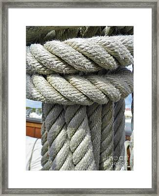 Wrapped Up Tight Framed Print