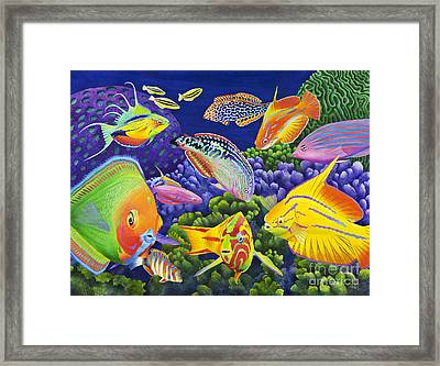 Wrasse Appeal Framed Print by Carolyn Steele