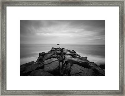 Wreck Of The Ss Atlansus Of Cape May Nj Framed Print