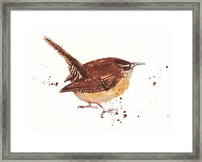 Wren - Cheeky Wren Framed Print by Alison Fennell