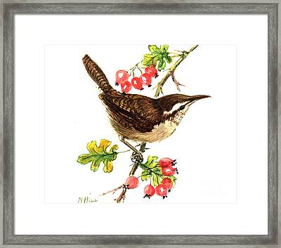 Wren And Rosehips Framed Print by Nell Hill