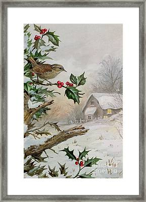 Wren In Hollybush By A Cottage Framed Print by Carl Donner