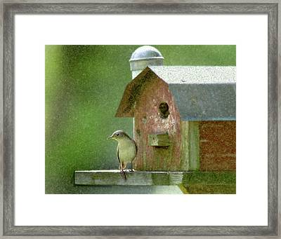 Wren Framed Print by John Hix