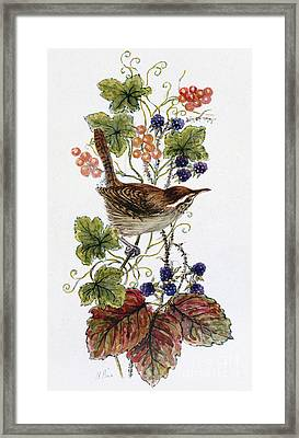 Wren On A Spray Of Berries Framed Print by Nell Hill