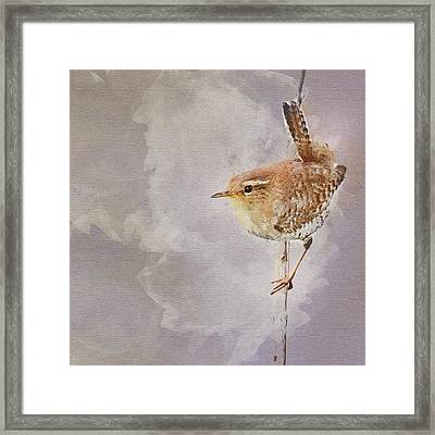 Wren Sitting On A Branch Framed Print by Art By Jeronimo
