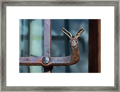 Wrought Iron - Jackrabbit Framed Print by Nikolyn McDonald