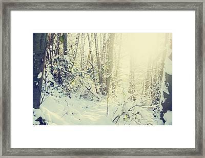 Wunderkind Framed Print by Kerry Langel