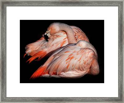 When Two Become As One Framed Print by Karen Wiles
