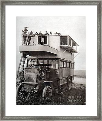 Wwi, French Carrier Pigeon Loft Framed Print