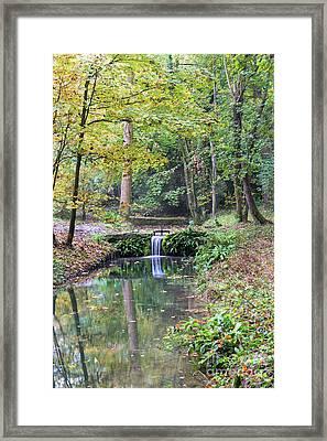 Wychwood Wild Garden Framed Print by Tim Gainey