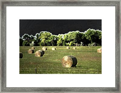 Wyoming Hay Rolls On The Ranch 02 Pa 02 Framed Print by Thomas Woolworth