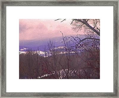 Wyoming Winter Berries Framed Print