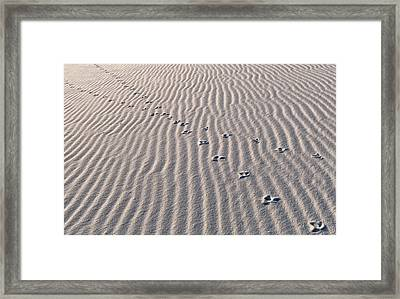 X Marks The Spot Framed Print by Bill Chambers