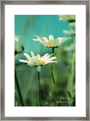 Xposed - S07b Framed Print by Variance Collections