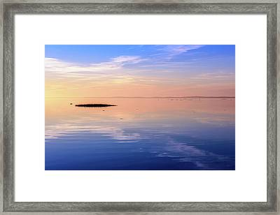Xtra Blue Framed Print by Thierry Bouriat
