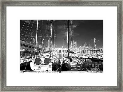 Xtravaganza And Aventure Framed Print by John Rizzuto