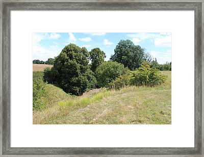 Framed Print featuring the photograph Y Ravine by JLowPhotos