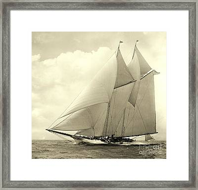Yacht America 1910 Framed Print by Padre Art