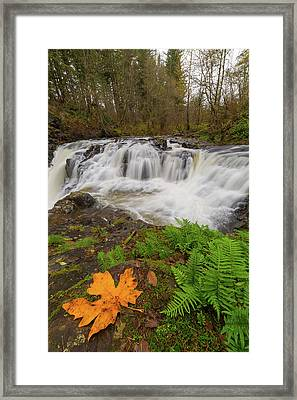 Yacolt Creek Falls In Fall Season Framed Print