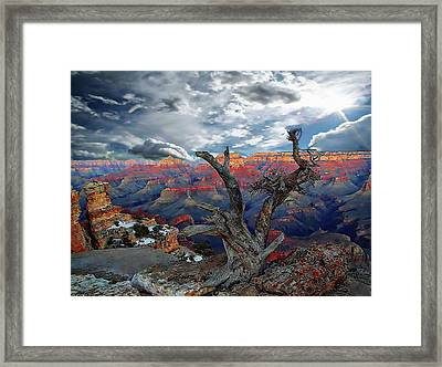 Yaki Point Grand Canyon Framed Print by Anthony Dezenzio